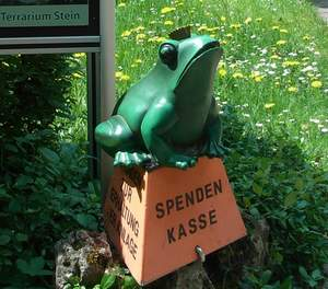 Spendenfrosch